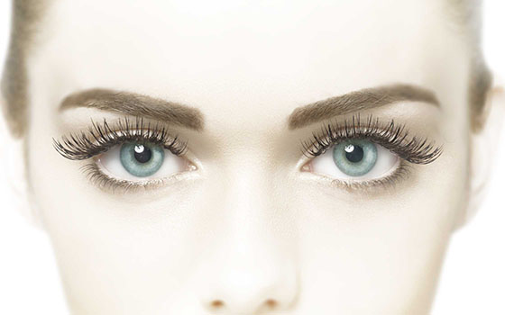 Lash Perfect Eye Treatments